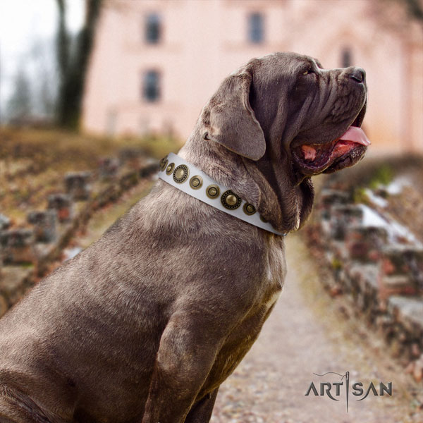 Mastino Napoletano easy to adjust leather collar with embellishments for your four-legged friend