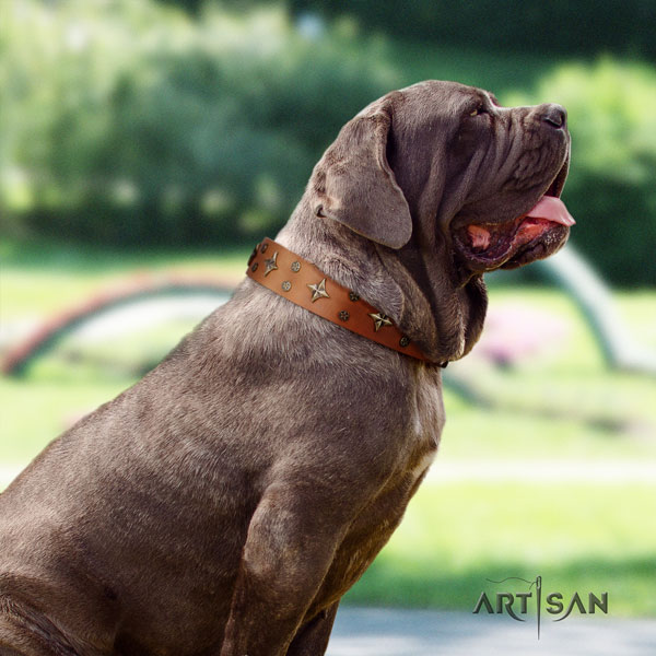 Mastino Napoletano handmade full grain genuine leather collar with adornments for your doggie