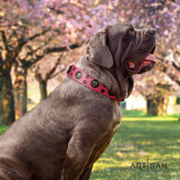 Mastino Napoletano unusual full grain natural leather collar with embellishments for your pet