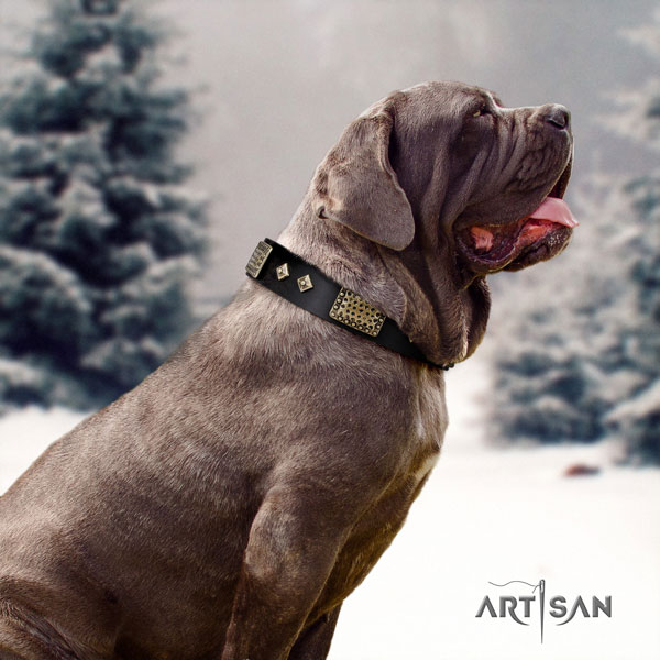 Mastino Napoletano fine quality genuine leather collar with adornments for your doggie