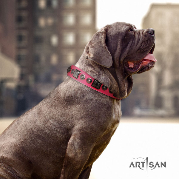 Mastino Napoletano inimitable full grain natural leather collar with studs for your doggie