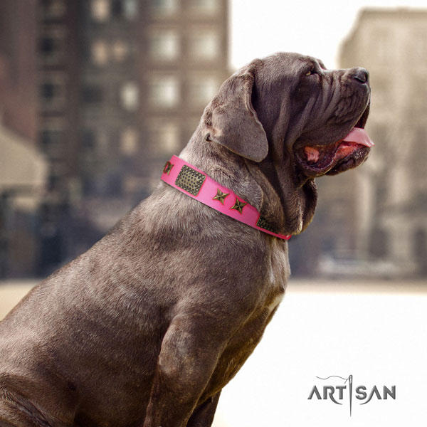 Mastino Napoletano convenient full grain natural leather collar with embellishments for your doggie