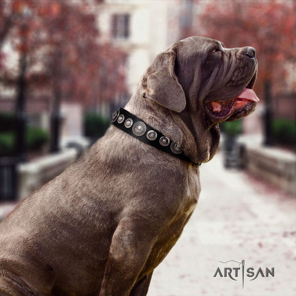 Mastino Napoletano easy wearing full grain genuine leather collar with adornments for your dog