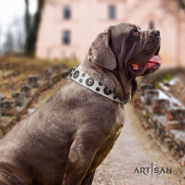 Mastino Napoletano fine quality full grain natural leather collar with embellishments for your dog
