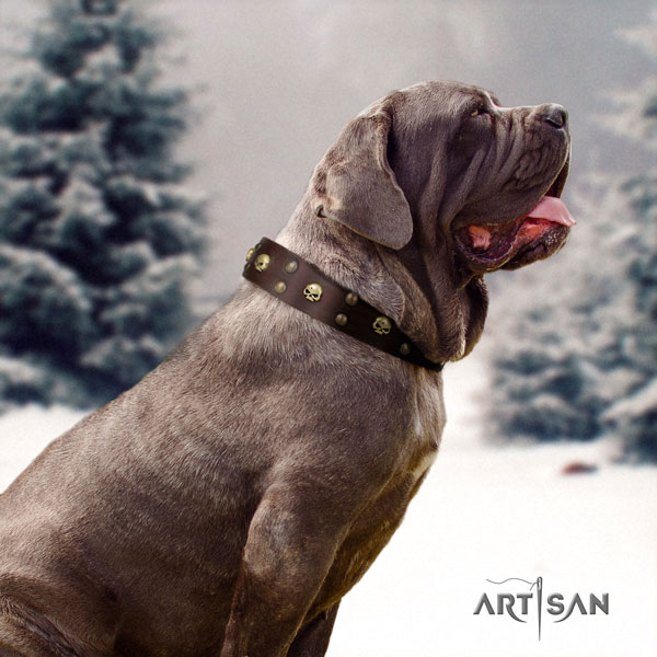 Mastino Napoletano stunning full grain genuine leather collar with studs for your canine