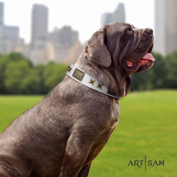Mastino Napoletano extraordinary full grain genuine leather collar with studs for your four-legged friend