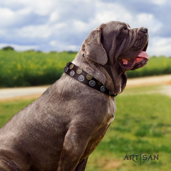 Mastino Napoletano stunning full grain natural leather collar with embellishments for your pet