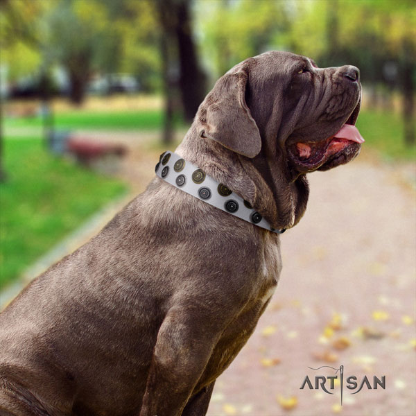 Mastino Napoletano extraordinary natural genuine leather collar with adornments for your dog