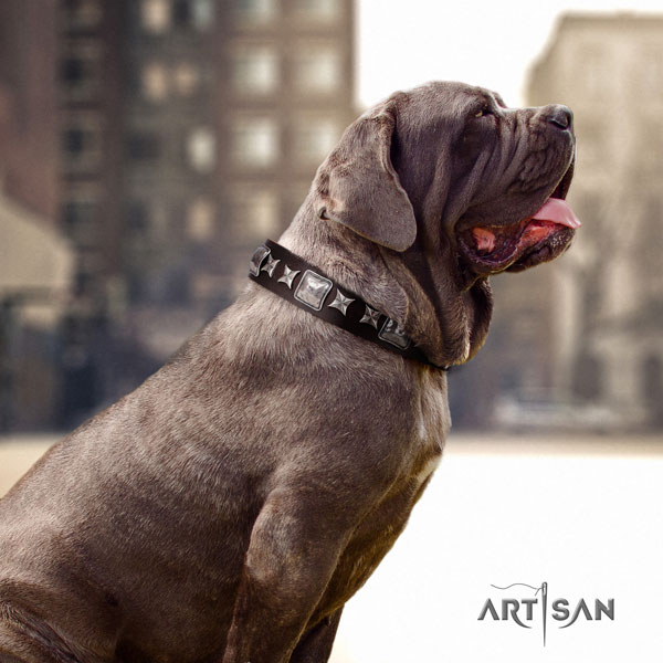 Mastino Napoletano designer full grain genuine leather collar with embellishments for your four-legged friend