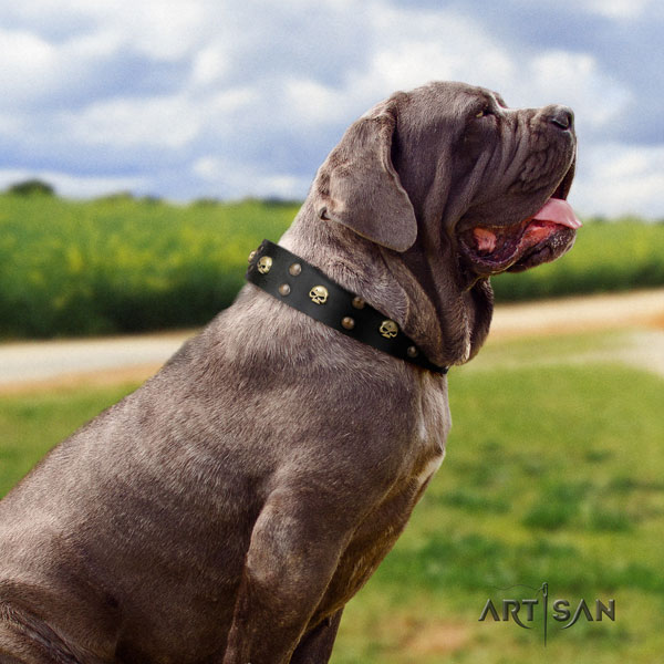 Mastino Napoletano extraordinary genuine leather collar with adornments for your pet