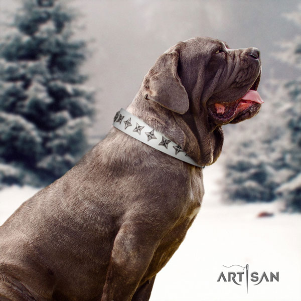 Mastino Napoletano stylish genuine leather collar with decorations for your doggie