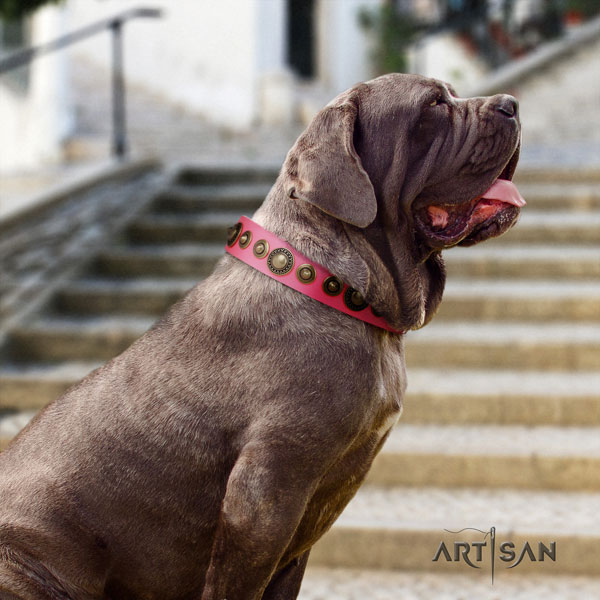 Mastino Napoletano unusual natural genuine leather collar with embellishments for your four-legged friend