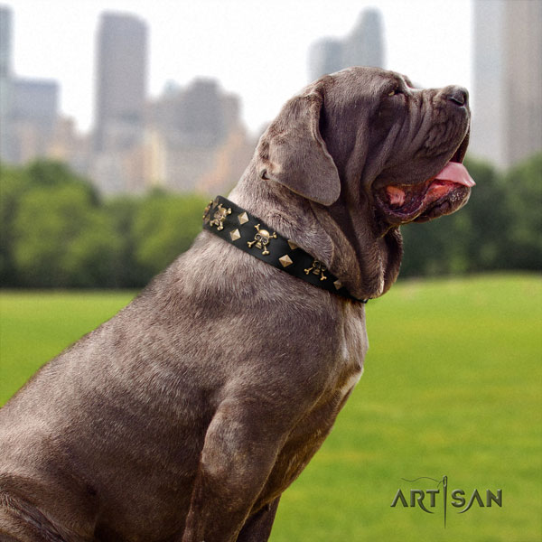 Mastino Napoletano remarkable full grain genuine leather collar with embellishments for your canine