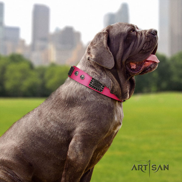 Mastino Napoletano comfortable full grain leather collar with decorations for your four-legged friend