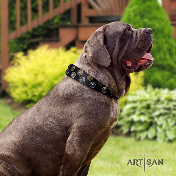 Mastino Napoletano easy to adjust leather collar with adornments for your four-legged friend