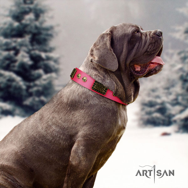 Mastino Napoletano top quality full grain genuine leather collar with decorations for your canine
