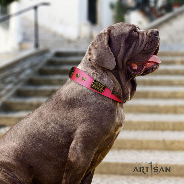 Mastino Napoletano stylish full grain leather collar with embellishments for your dog