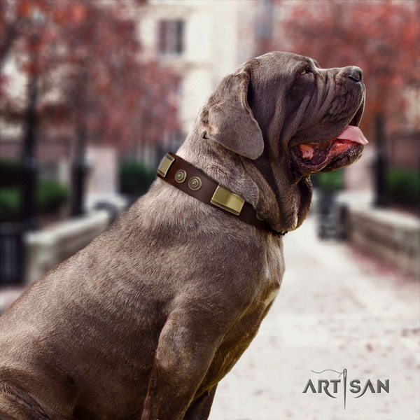 Mastino Napoletano stunning full grain leather collar with decorations for your canine