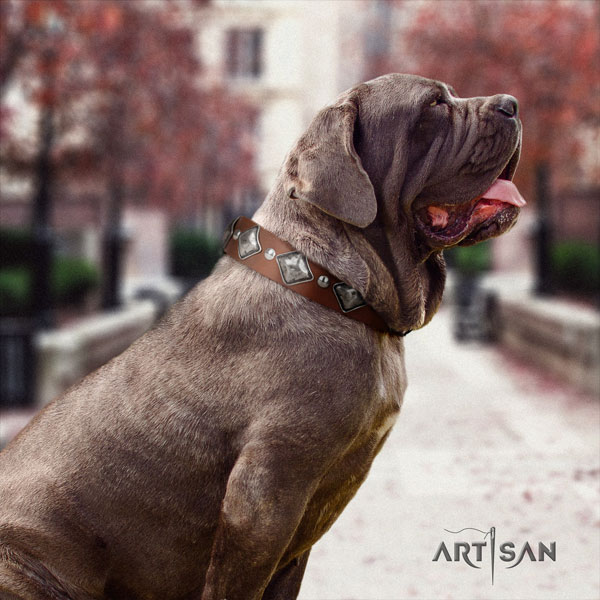 Mastino Napoletano incredible genuine leather collar with studs for your pet