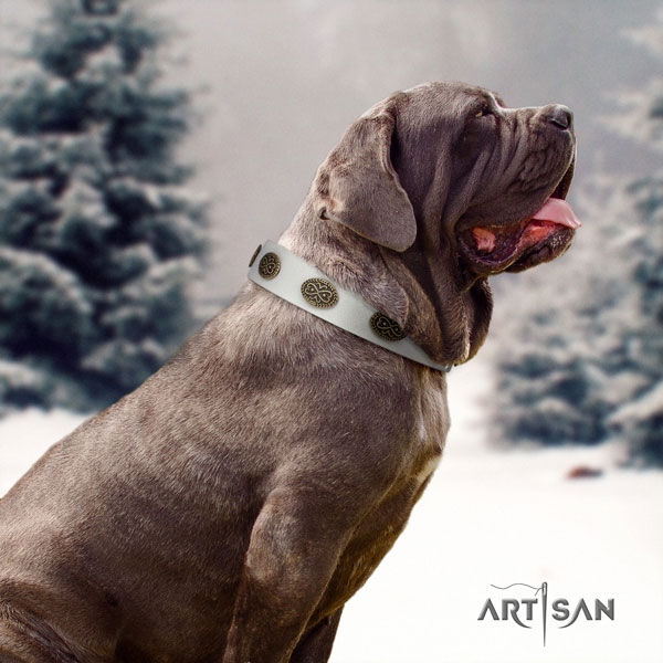 Mastino Napoletano extraordinary leather collar with embellishments for your canine