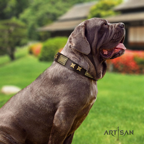Mastino Napoletano perfect fit genuine leather collar with embellishments for your pet