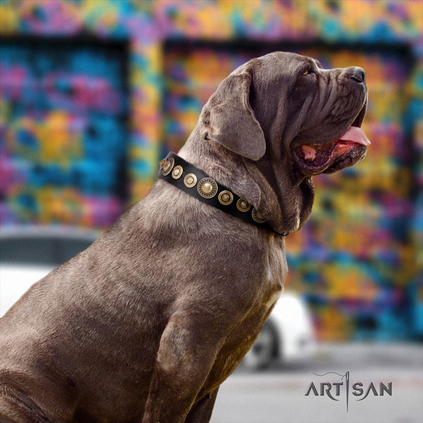 Mastino Napoletano unusual full grain natural leather collar with decorations for your pet