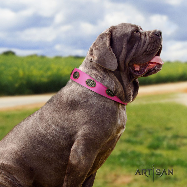 Mastino Napoletano fine quality natural genuine leather collar with studs for your doggie