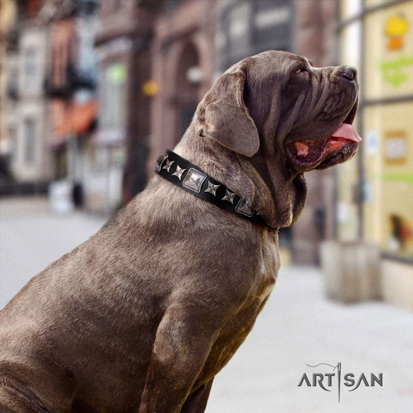 Mastino Napoletano top notch genuine leather collar with adornments for your dog