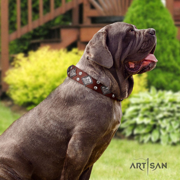 Mastino Napoletano remarkable natural genuine leather collar with decorations for your four-legged friend