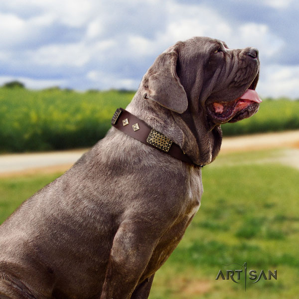 Mastino Napoletano stunning natural genuine leather collar with decorations for your doggie