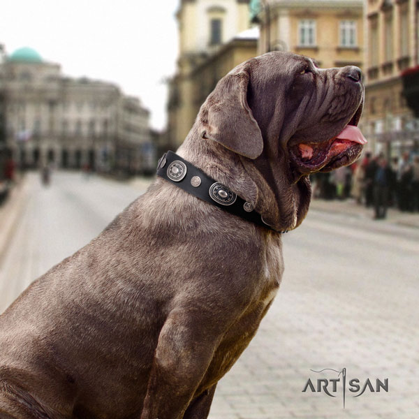 Mastino Napoletano easy adjustable full grain genuine leather collar with adornments for your pet