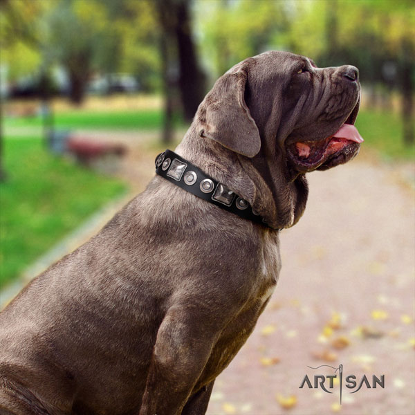 Mastino Napoletano handcrafted full grain natural leather collar with studs for your canine
