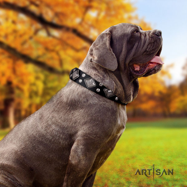 Mastino Napoletano inimitable genuine leather collar with adornments for your dog