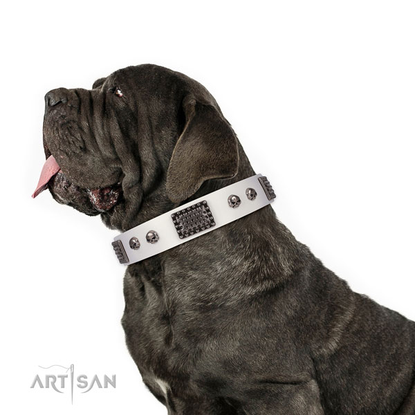 Best quality genuine leather collar for your lovely four-legged friend