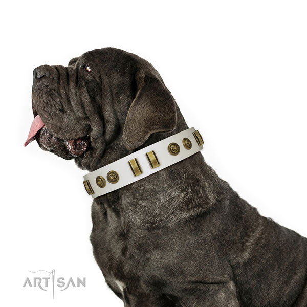 Corrosion proof hardware on leather dog collar for comfy wearing