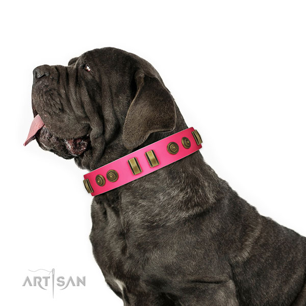 Walking dog collar of genuine leather with awesome decorations