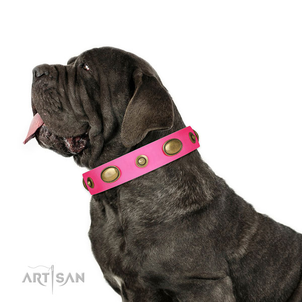 Handy use dog collar of natural leather with unusual decorations