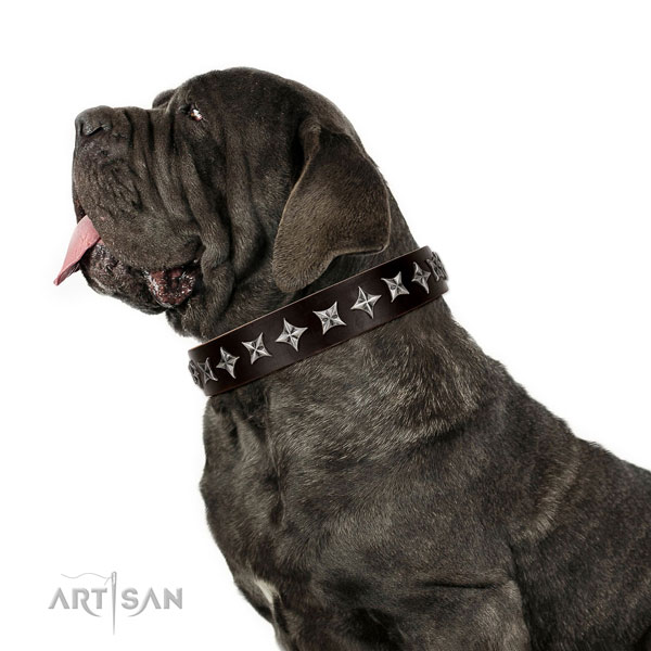 Comfy wearing decorated dog collar of reliable genuine leather