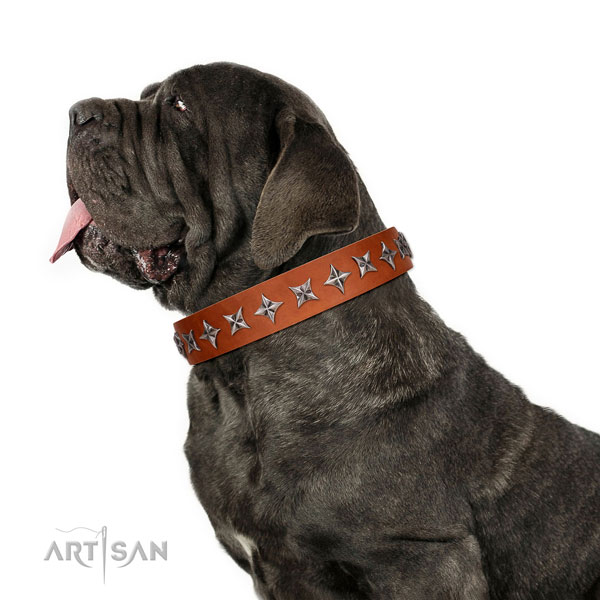 Comfortable wearing embellished dog collar of reliable leather
