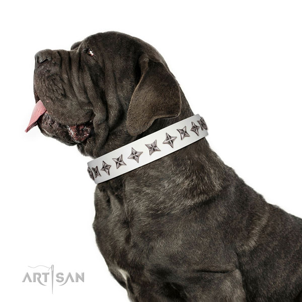 Finest quality full grain leather dog collar with exceptional studs