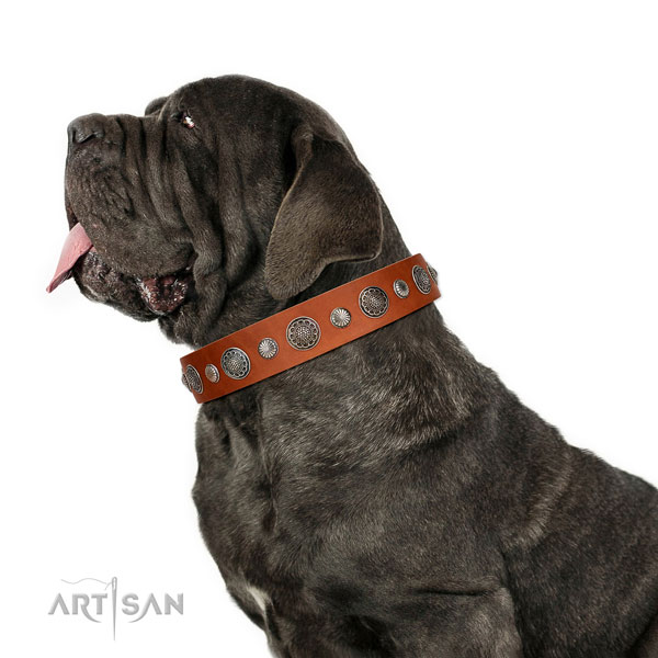 Top quality Full grain natural leather dog collar with rust resistant traditional buckle