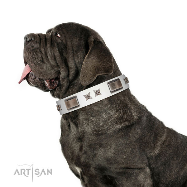 Fancy walking soft to touch full grain natural leather dog collar with studs