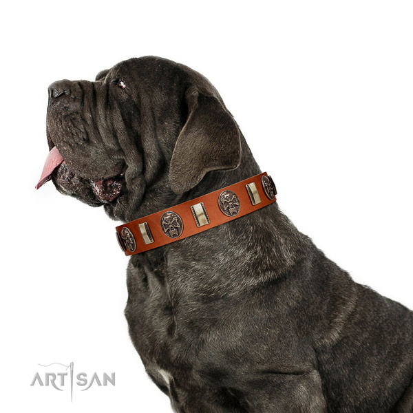 Natural leather collar with studs for your handsome canine