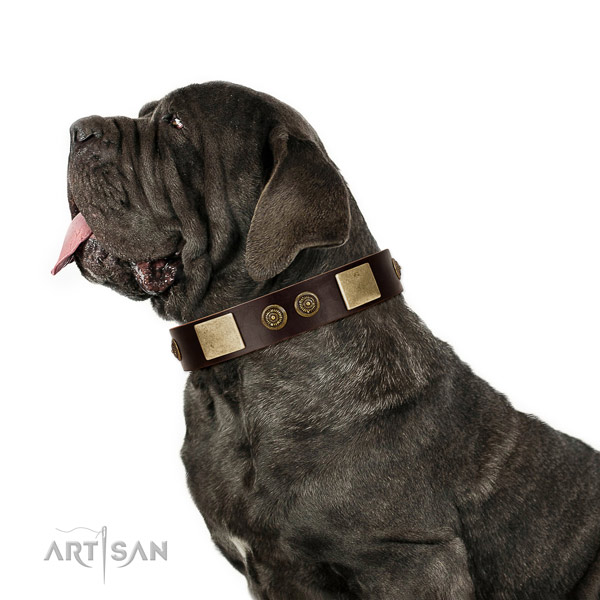 Easy wearing dog collar of leather with unusual adornments