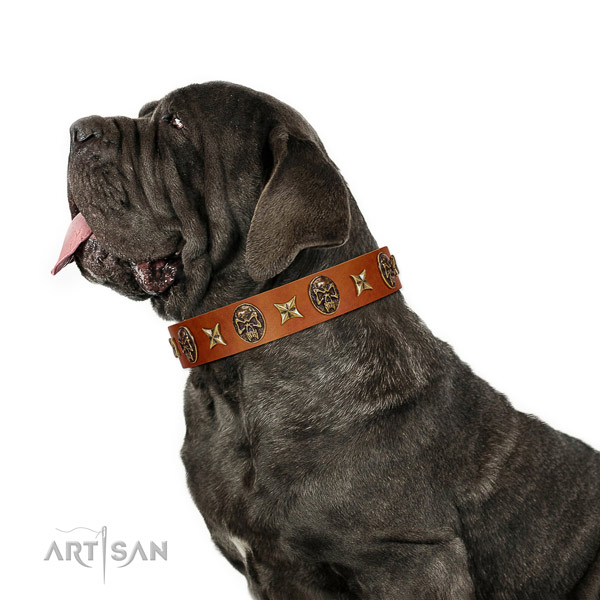 Fashionable natural leather dog collar with adornments
