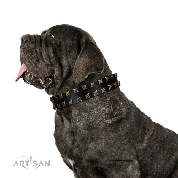 Top notch full grain natural leather dog collar with studs for your dog