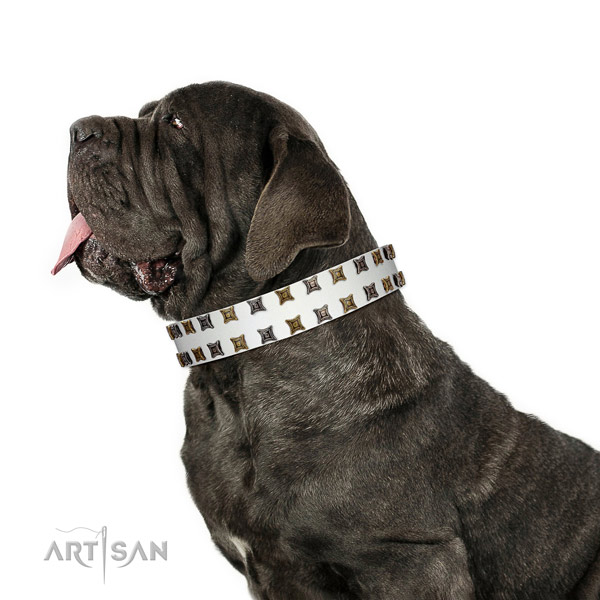 Soft to touch full grain genuine leather dog collar with adornments for your pet