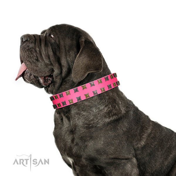 Reliable full grain leather dog collar with studs for your canine