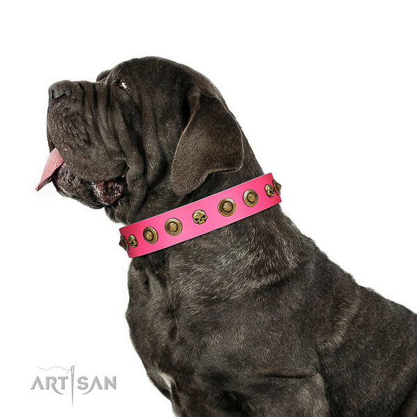 Fashionable full grain leather dog collar with embellishments