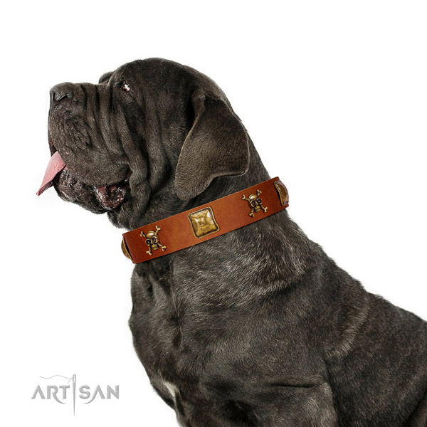 Designer full grain genuine leather dog collar with corrosion proof decorations